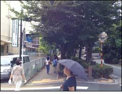 道順写真その4